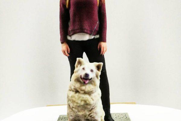 Figuras de Mascotas Personalizables