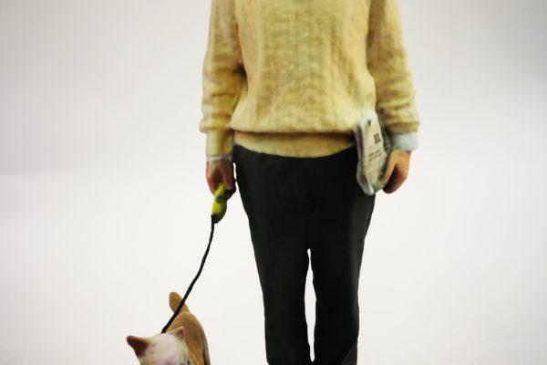 Figuras de mascotas en 3D